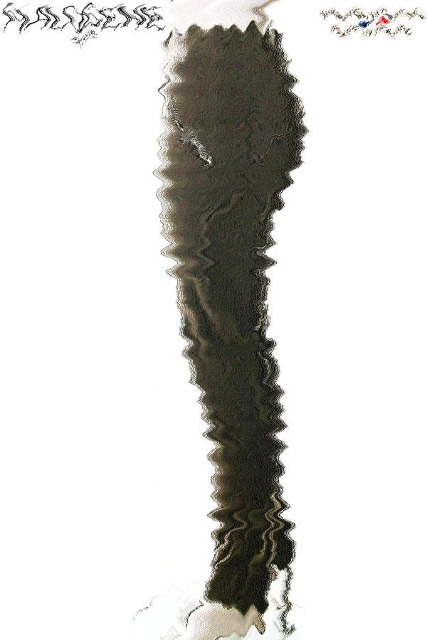 Pantalon - W425AR78