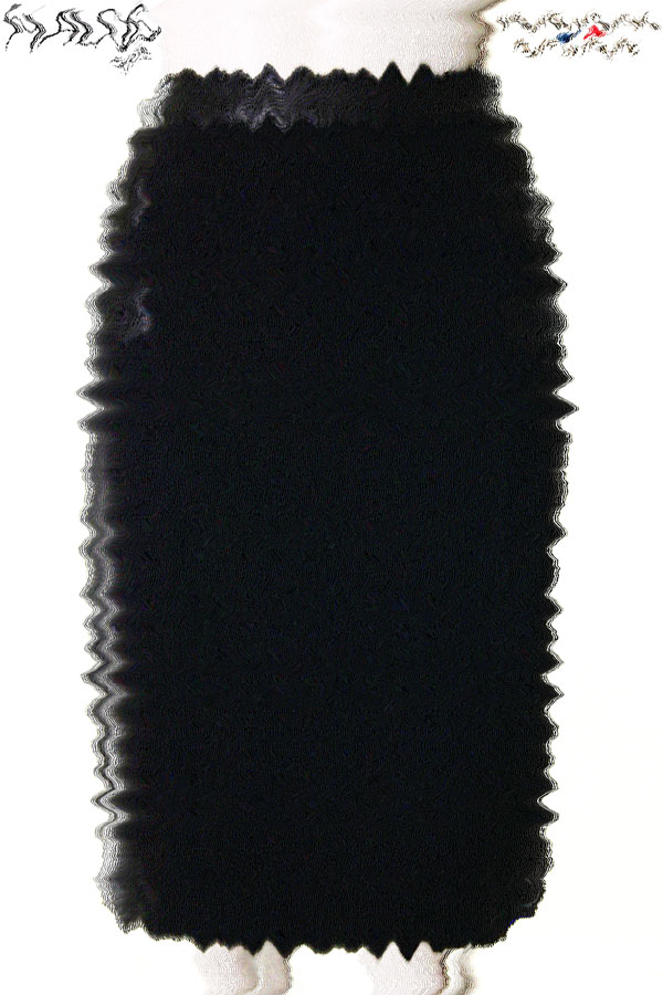 Jupe - W513AP05